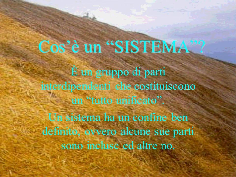 Cos'è un SISTEMA È un gruppo di parti interdipendenti che costituiscono un tutto unificato .
