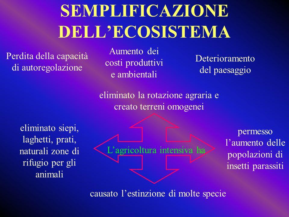 SEMPLIFICAZIONE DELL'ECOSISTEMA