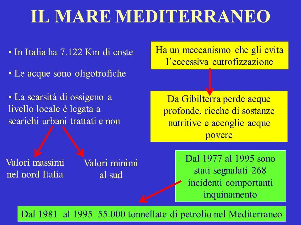 IL MARE MEDITERRANEO Ha un meccanismo che gli evita l'eccessiva eutrofizzazione. In Italia ha 7.122 Km di coste.