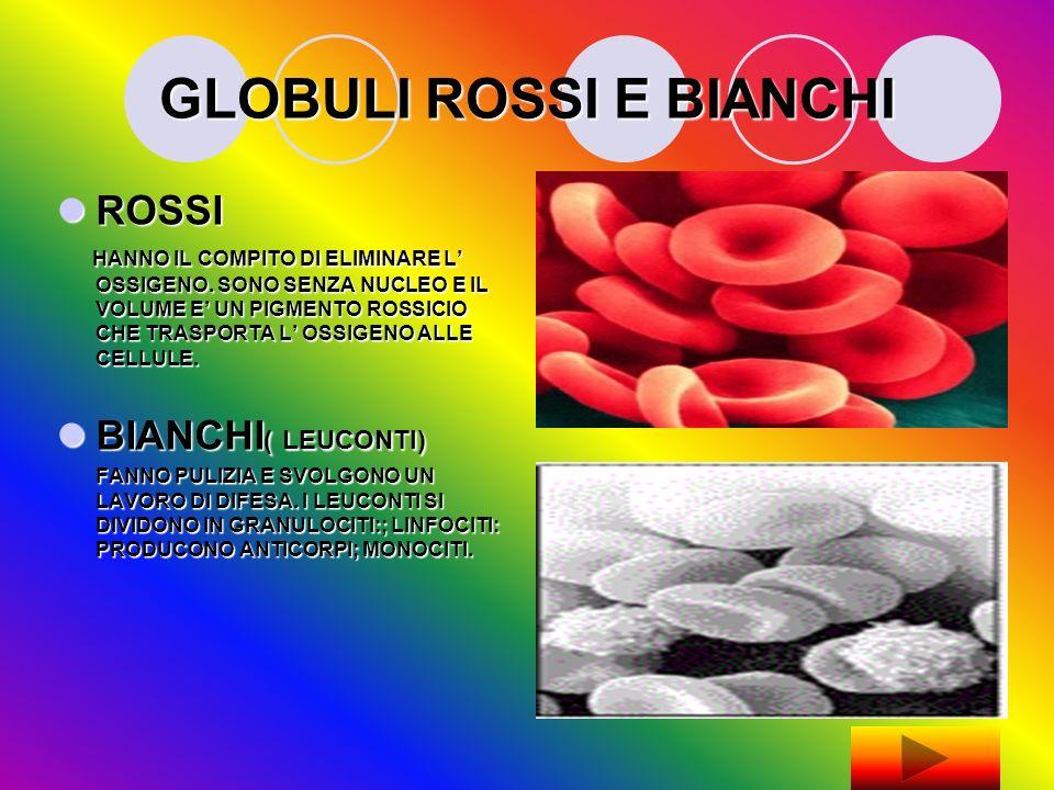GLOBULI ROSSI E BIANCHI