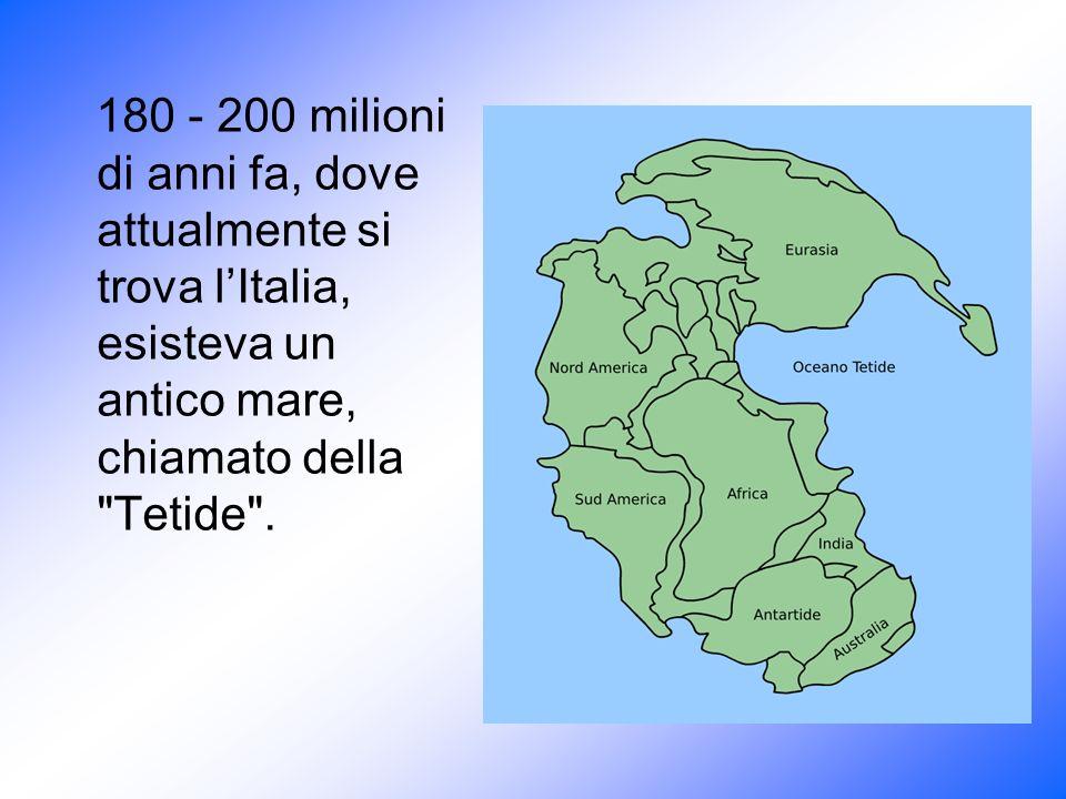 180 - 200 milioni di anni fa, dove attualmente si trova l'Italia, esisteva un antico mare, chiamato della Tetide .