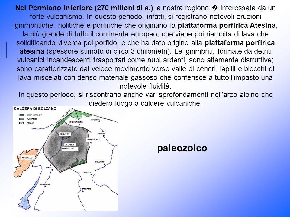 Nel Permiano inferiore (270 milioni di a