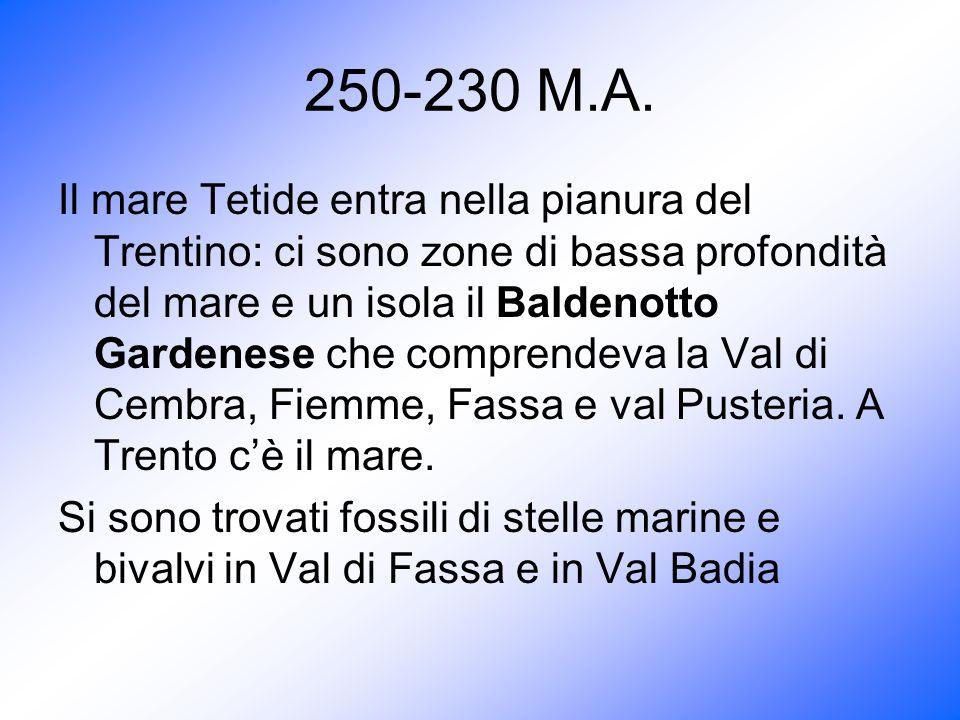 250-230 M.A.