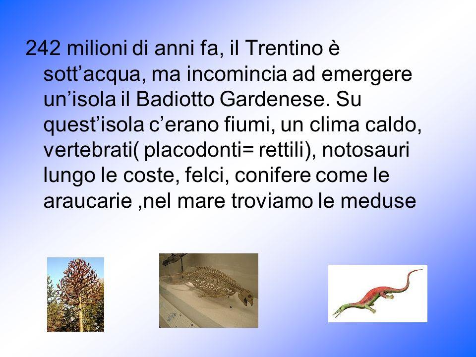 242 milioni di anni fa, il Trentino è sott'acqua, ma incomincia ad emergere un'isola il Badiotto Gardenese.