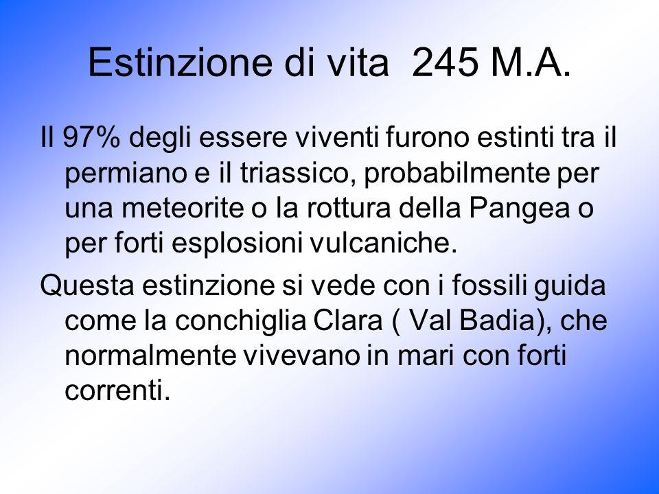 Estinzione di vita 245 M.A.