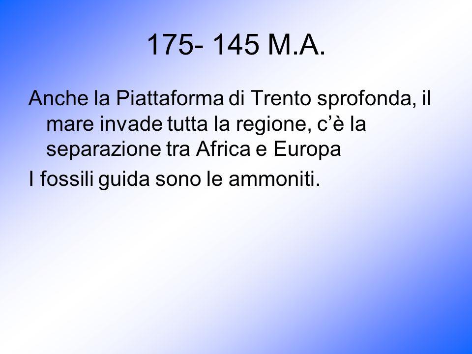 175- 145 M.A. Anche la Piattaforma di Trento sprofonda, il mare invade tutta la regione, c'è la separazione tra Africa e Europa.