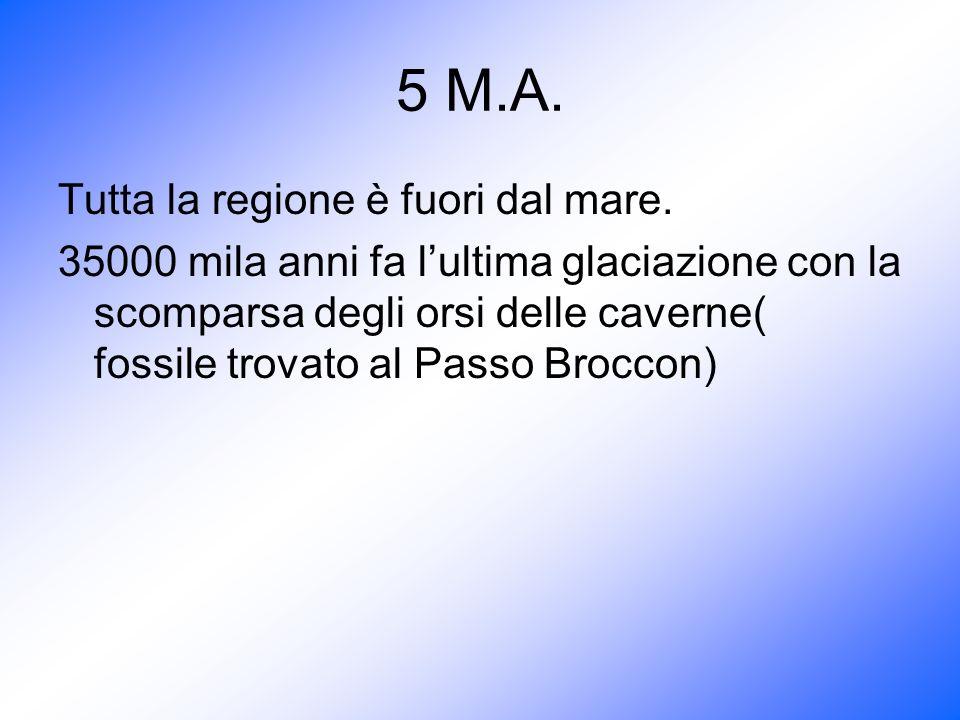5 M.A. Tutta la regione è fuori dal mare.