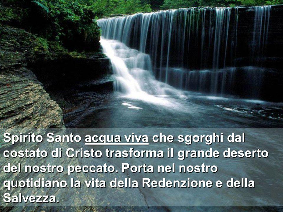 Spirito Santo acqua viva che sgorghi dal costato di Cristo trasforma il grande deserto del nostro peccato.