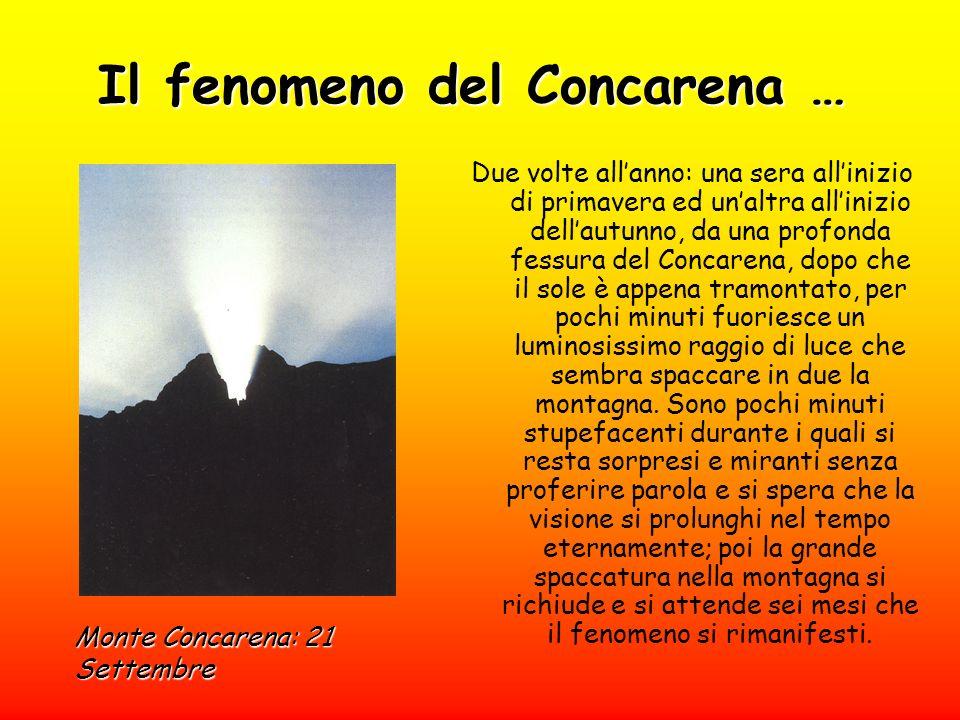 Il fenomeno del Concarena …