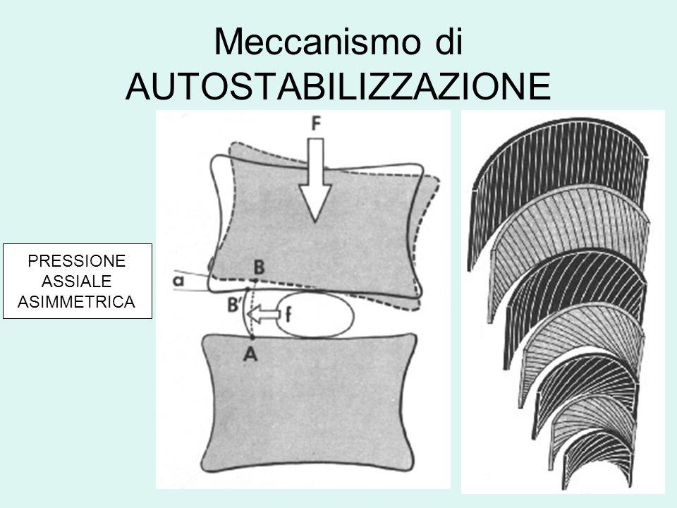Meccanismo di AUTOSTABILIZZAZIONE