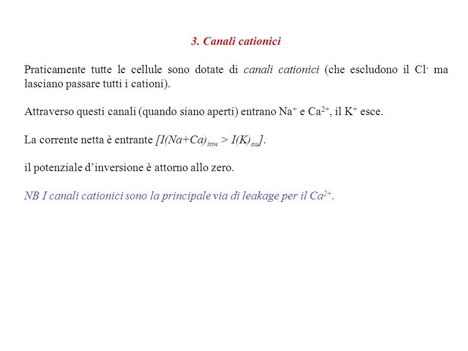 3. Canali cationici Praticamente tutte le cellule sono dotate di canali cationici (che escludono il Cl- ma lasciano passare tutti i cationi).