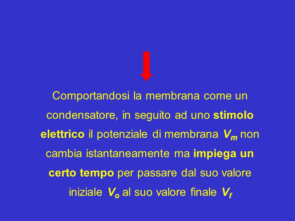 Comportandosi la membrana come un condensatore, in seguito ad uno stimolo elettrico il potenziale di membrana Vm non cambia istantaneamente ma impiega un certo tempo per passare dal suo valore iniziale Vo al suo valore finale Vf