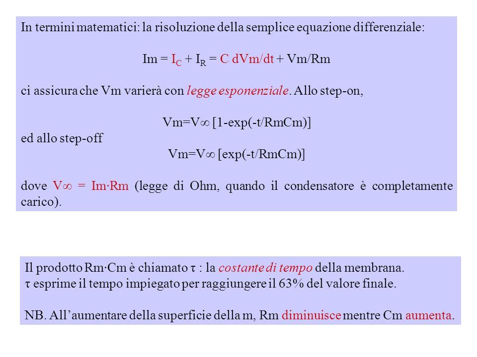 Im = IC + IR = C dVm/dt + Vm/Rm