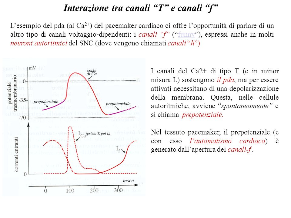 Interazione tra canali T e canali f