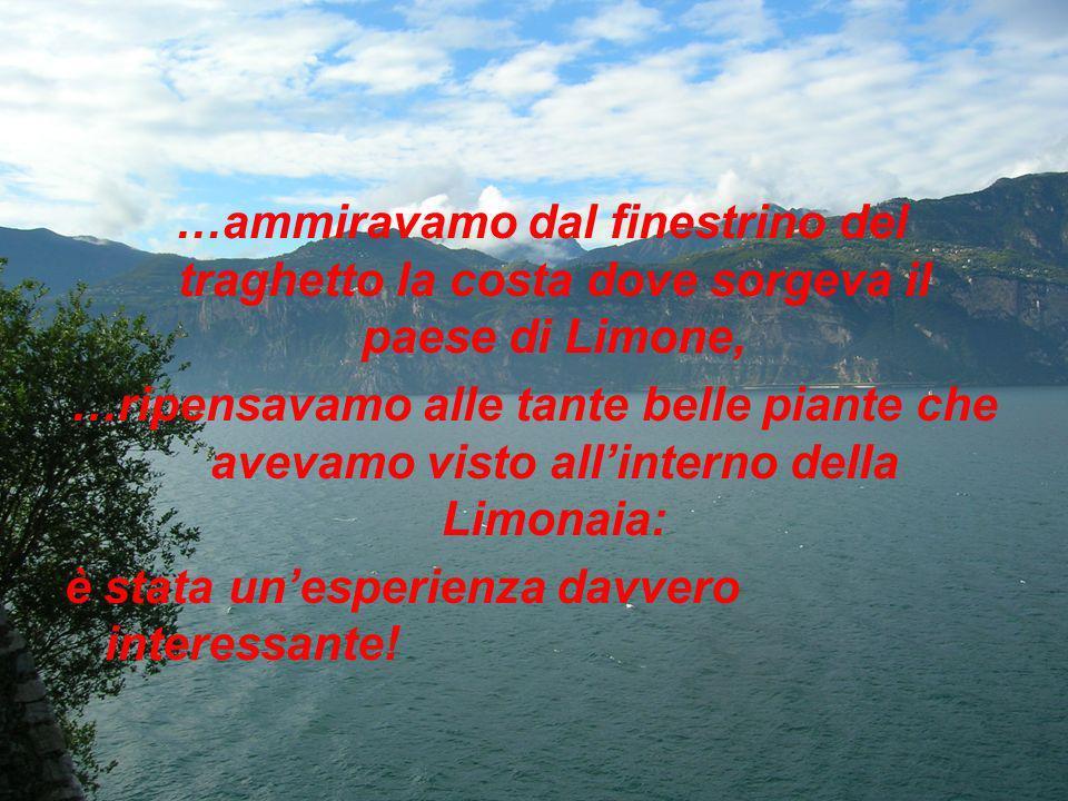 …ammiravamo dal finestrino del traghetto la costa dove sorgeva il paese di Limone,