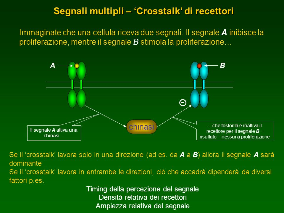 Segnali multipli – 'Crosstalk' di recettori