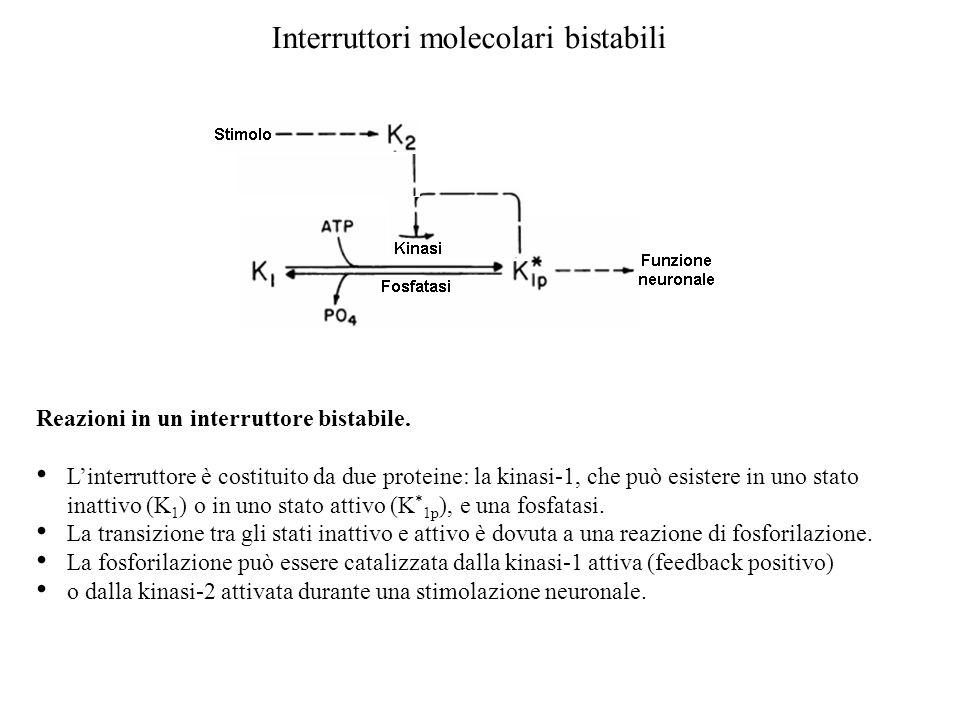 Interruttori molecolari bistabili