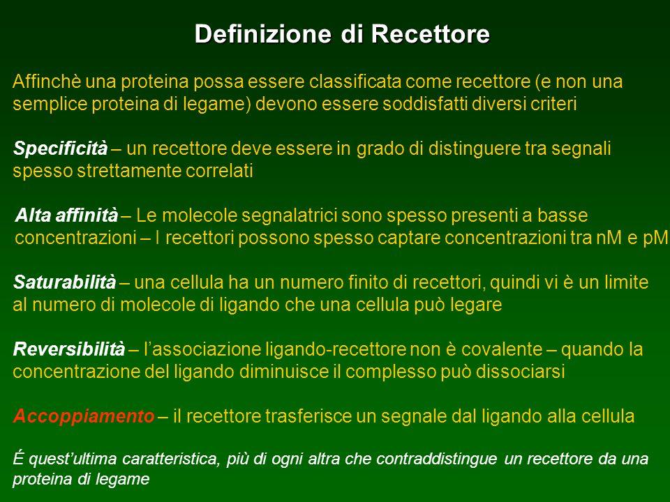Definizione di Recettore