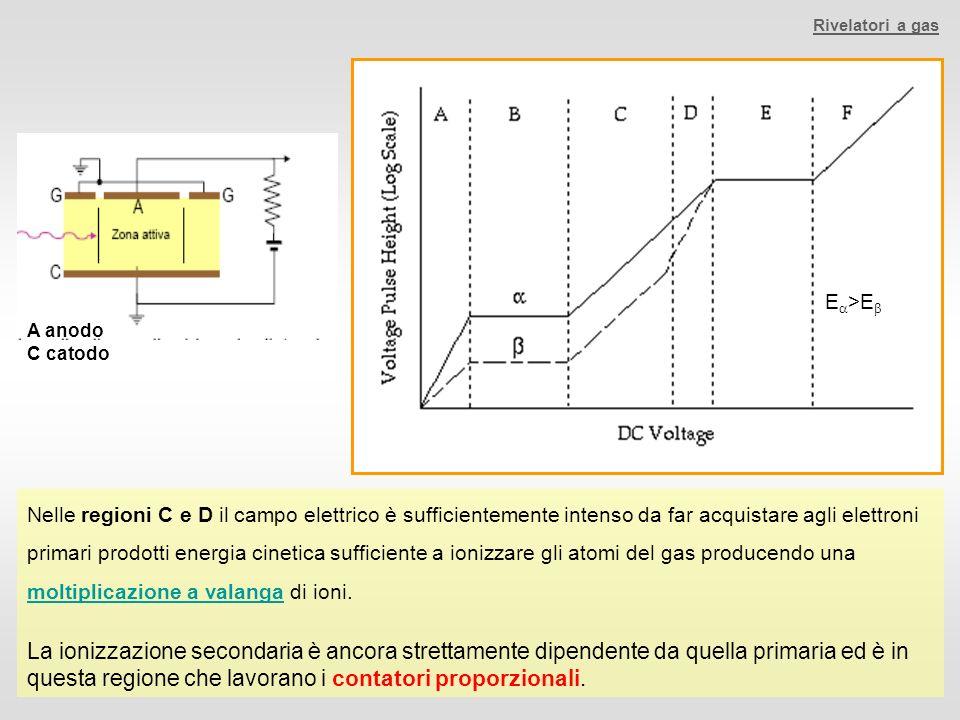 Rivelatori a gas E>E A anodo. C catodo.