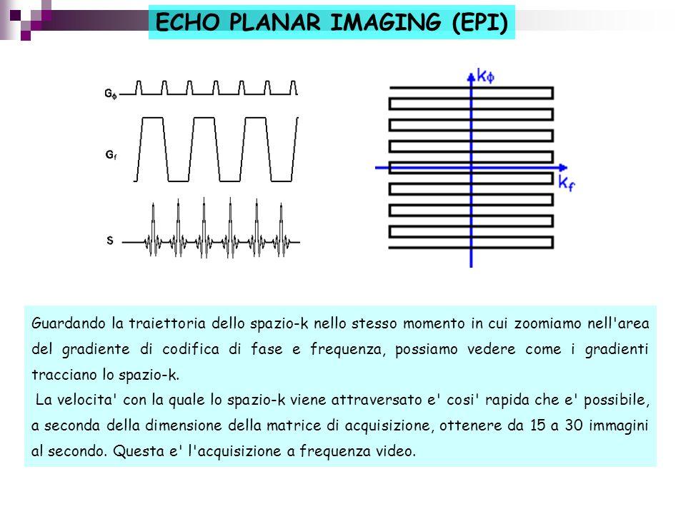ECHO PLANAR IMAGING (EPI)