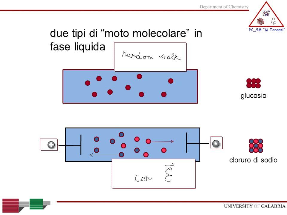 due tipi di moto molecolare in fase liquida