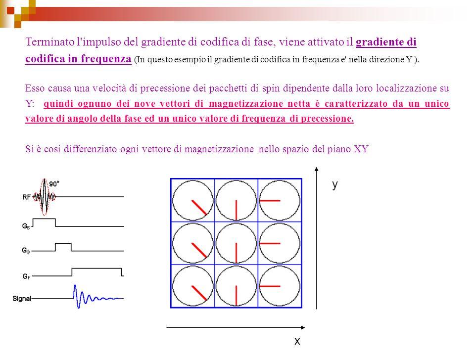 Terminato l impulso del gradiente di codifica di fase, viene attivato il gradiente di codifica in frequenza (In questo esempio il gradiente di codifica in frequenza e nella direzione Y ).