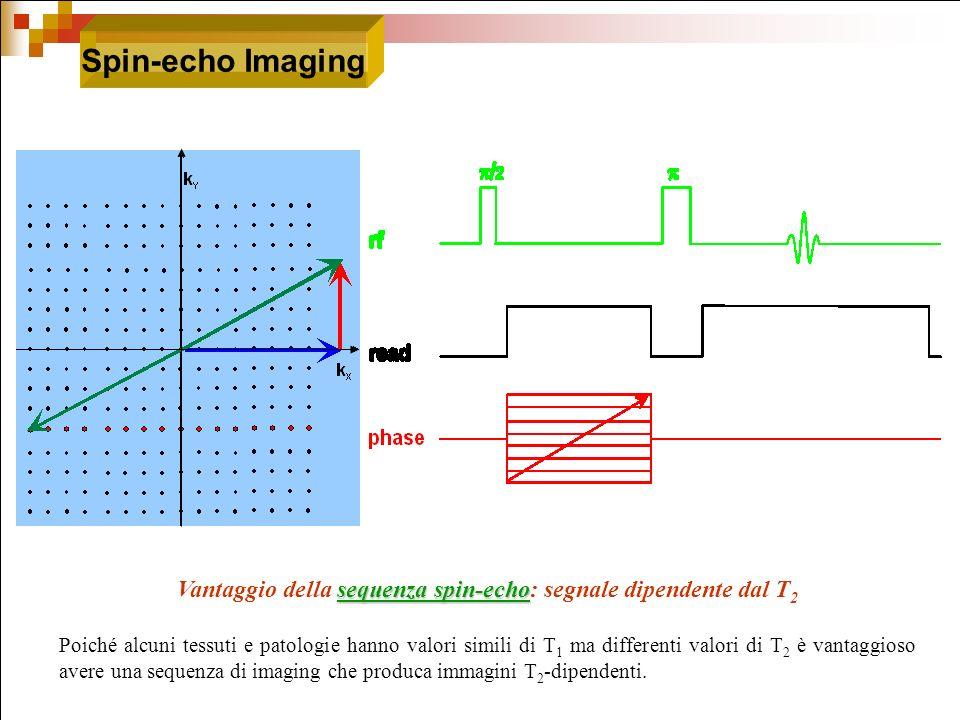 Vantaggio della sequenza spin-echo: segnale dipendente dal T2