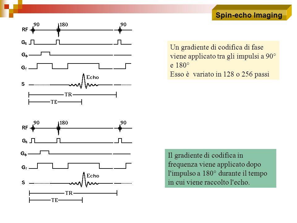 Spin-echo Imaging Un gradiente di codifica di fase viene applicato tra gli impulsi a 90° e 180° Esso è variato in 128 o 256 passi.