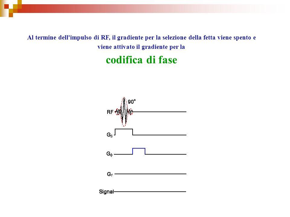 Al termine dell impulso di RF, il gradiente per la selezione della fetta viene spento e viene attivato il gradiente per la