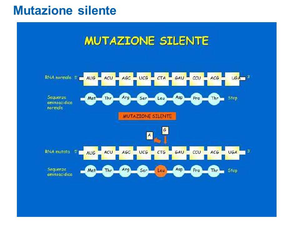 Mutazione silente