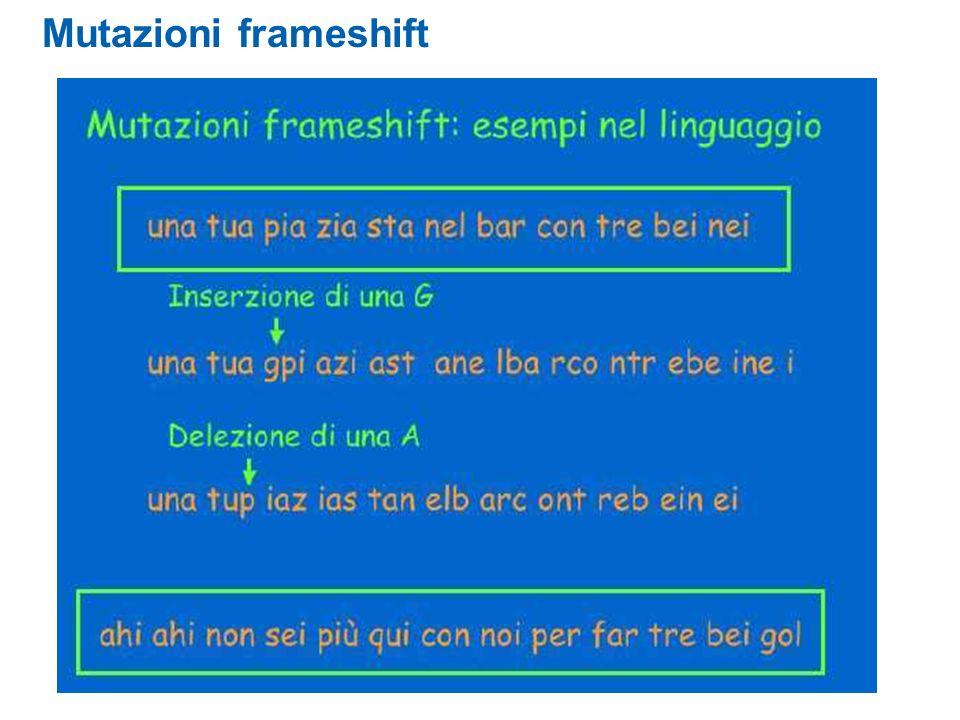 Mutazioni frameshift