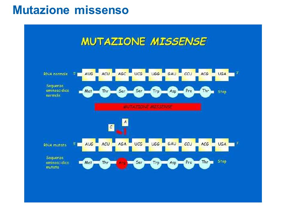 Mutazione missenso
