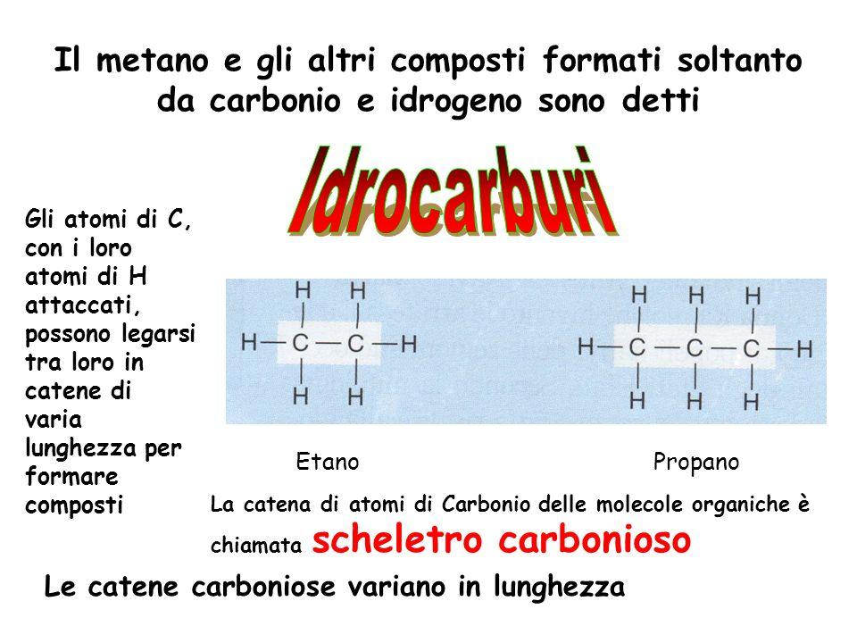 Il metano e gli altri composti formati soltanto da carbonio e idrogeno sono detti
