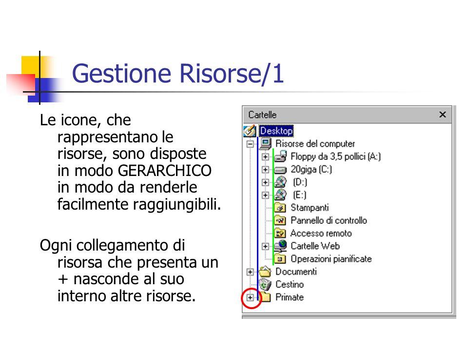 Gestione Risorse/1 Le icone, che rappresentano le risorse, sono disposte in modo GERARCHICO in modo da renderle facilmente raggiungibili.