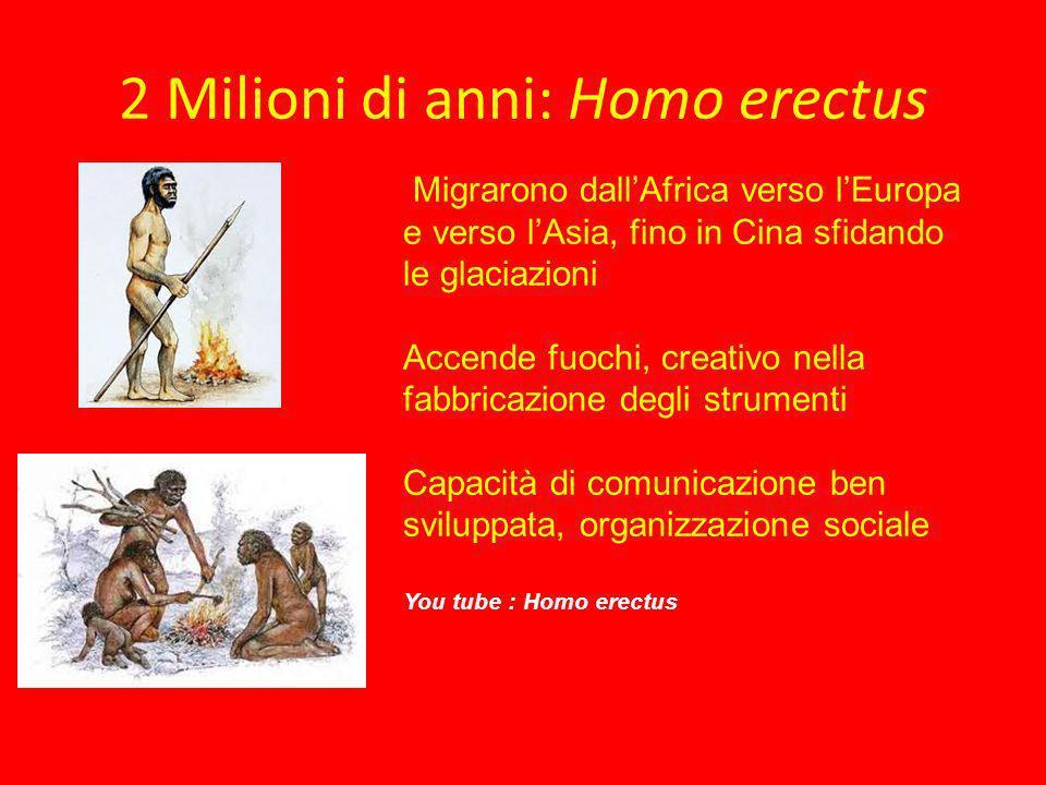 2 Milioni di anni: Homo erectus
