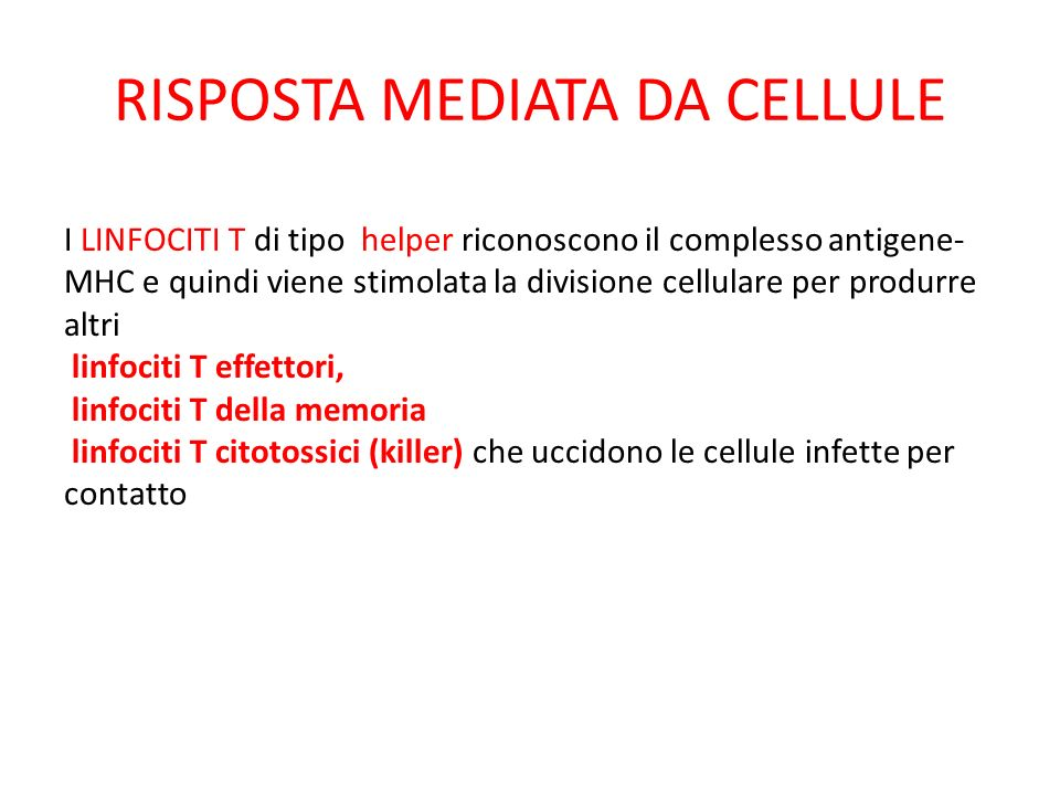 RISPOSTA MEDIATA DA CELLULE