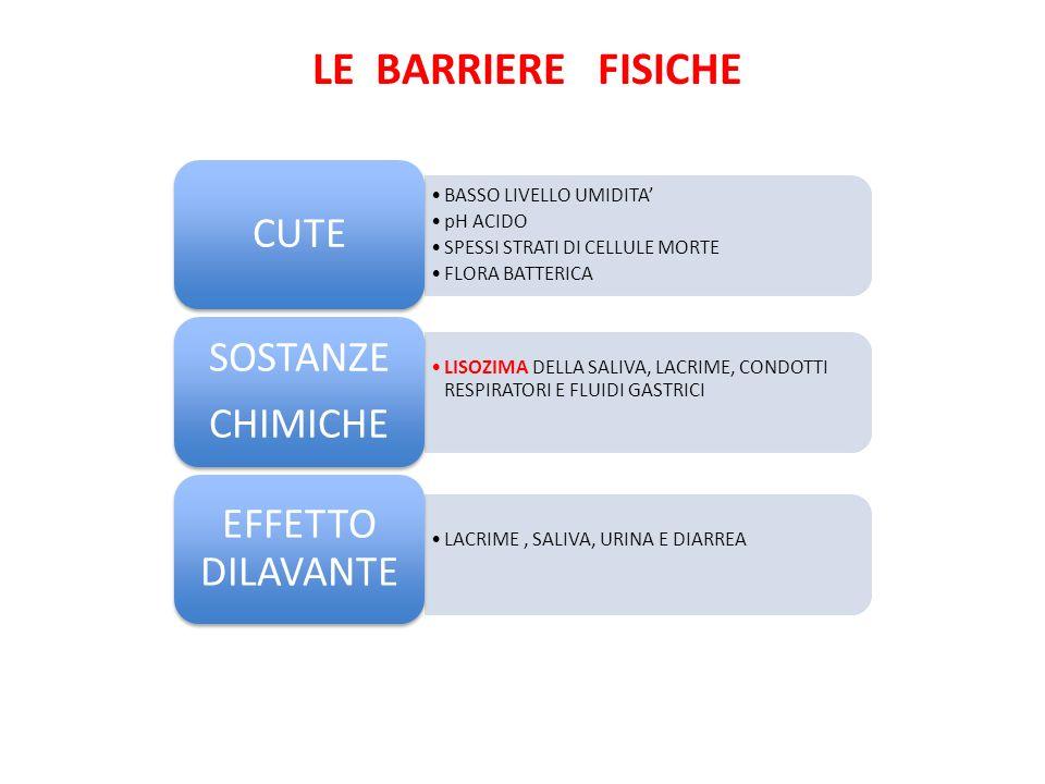 LE BARRIERE FISICHE CUTE SOSTANZE CHIMICHE EFFETTO DILAVANTE