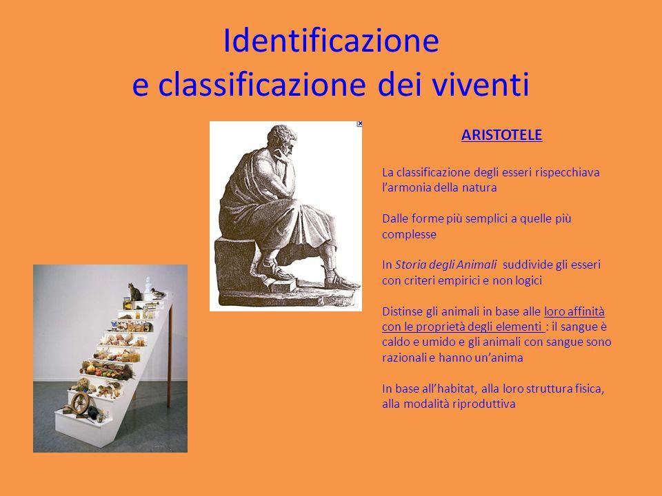 Identificazione e classificazione dei viventi