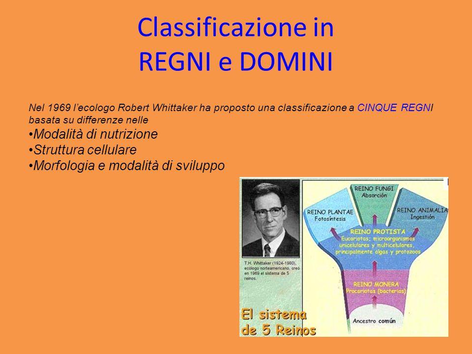 Classificazione in REGNI e DOMINI
