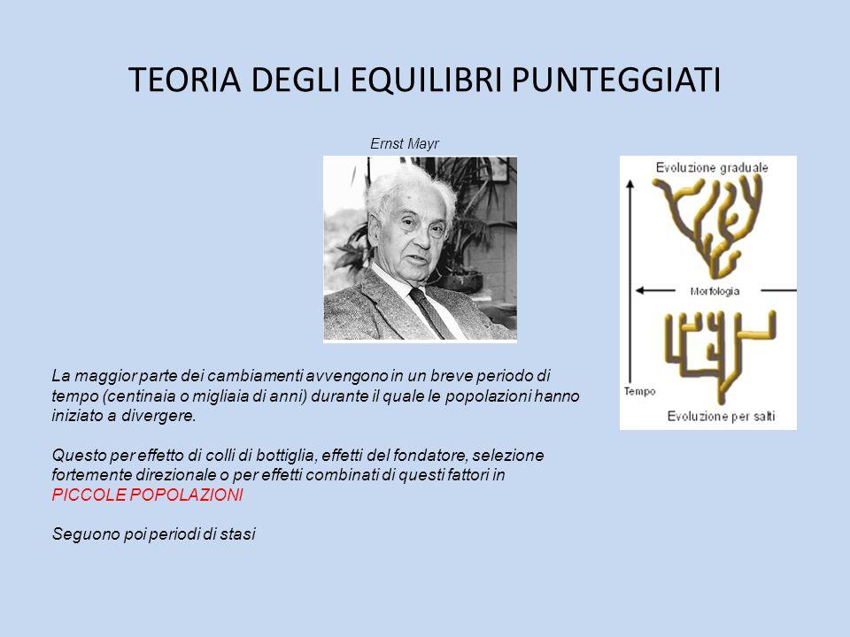 TEORIA DEGLI EQUILIBRI PUNTEGGIATI