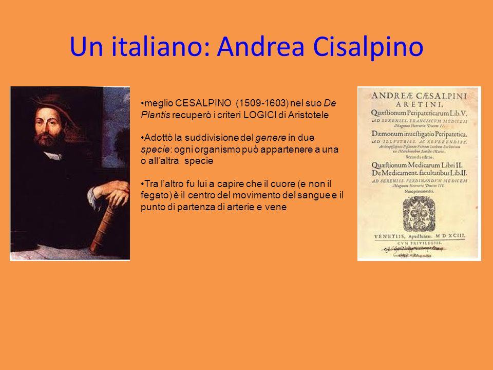 Un italiano: Andrea Cisalpino