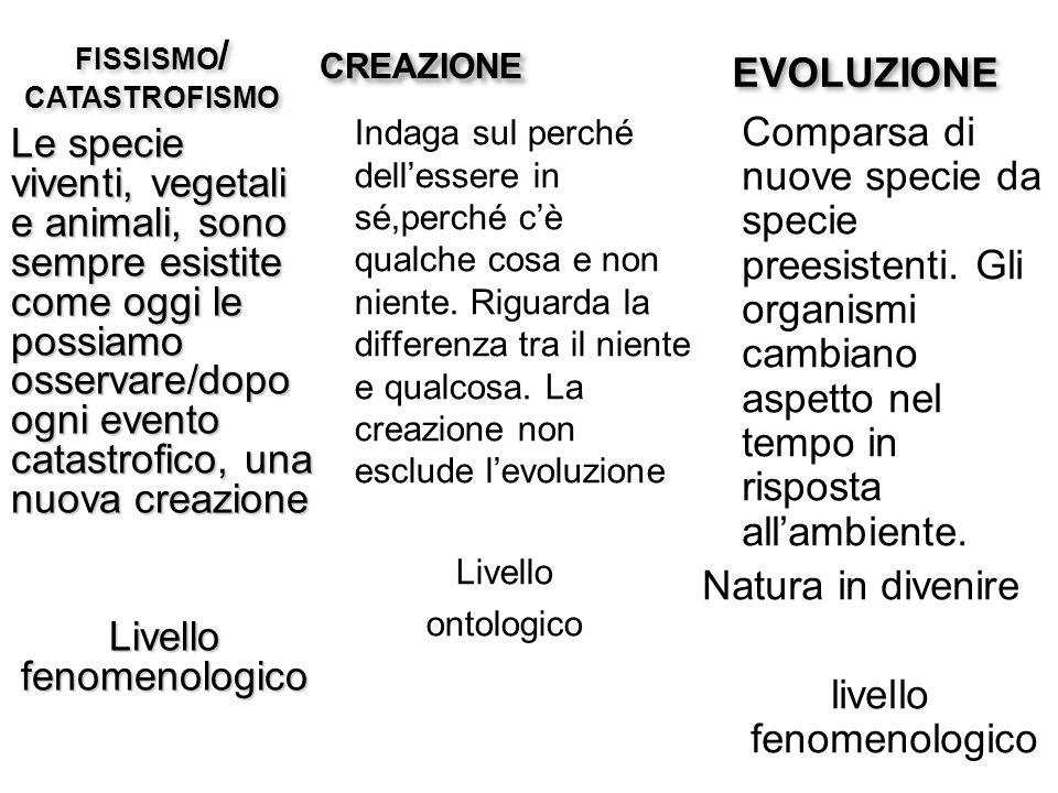 FISSISMO/ CATASTROFISMO