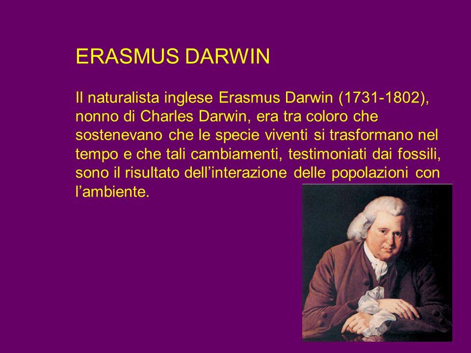ERASMUS DARWIN Il naturalista inglese Erasmus Darwin (1731-1802), nonno di Charles Darwin, era tra coloro che sostenevano che le specie viventi si trasformano nel tempo e che tali cambiamenti, testimoniati dai fossili, sono il risultato dell'interazione delle popolazioni con l'ambiente.
