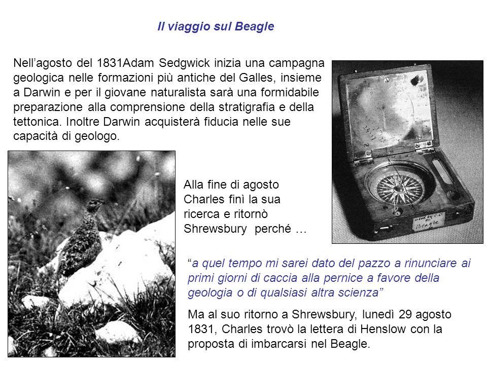 Il viaggio sul Beagle