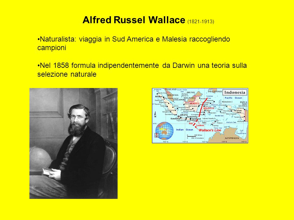 Alfred Russel Wallace (1821-1913)