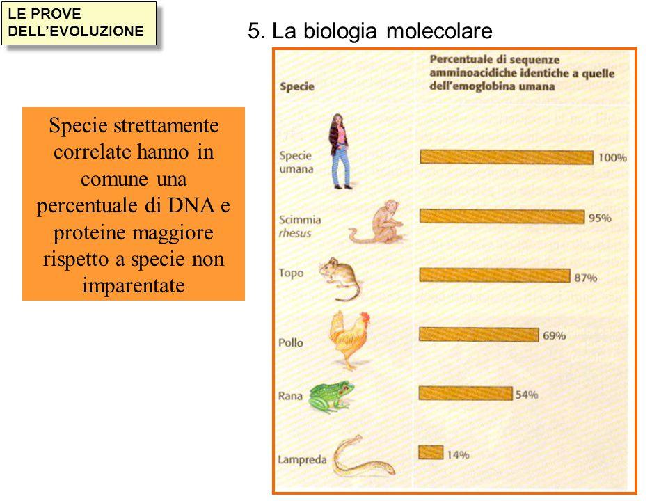 5. La biologia molecolare