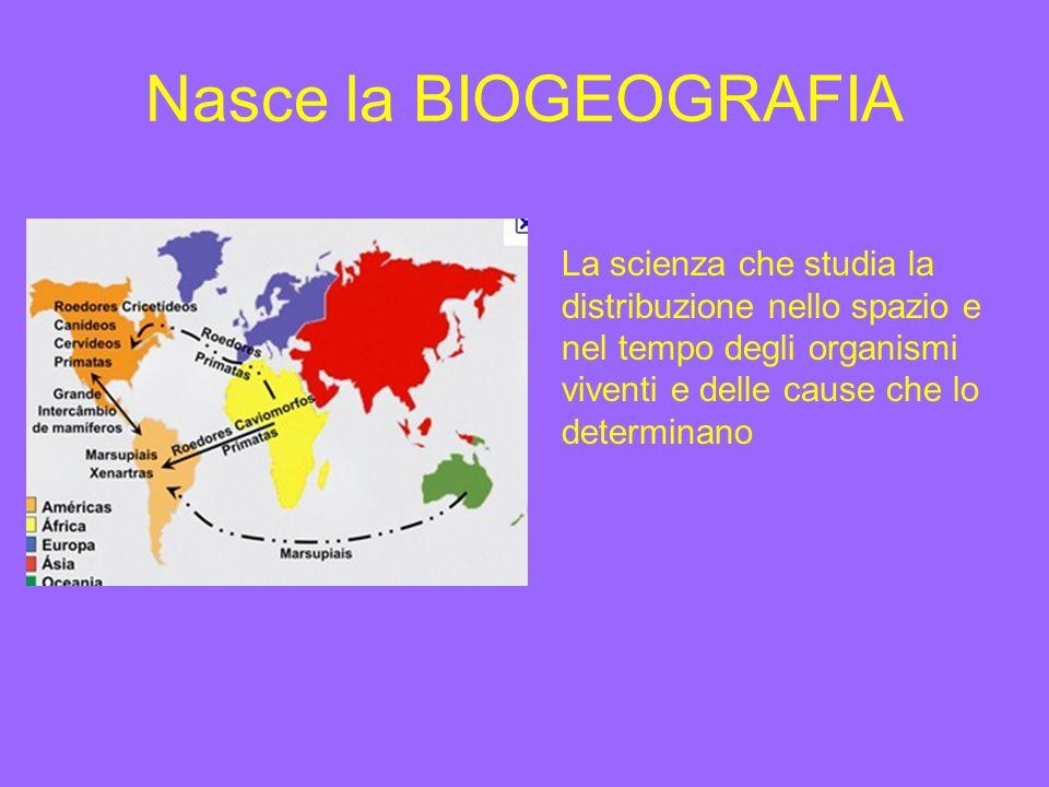 Nasce la BIOGEOGRAFIA La scienza che studia la distribuzione nello spazio e nel tempo degli organismi viventi e delle cause che lo determinano.