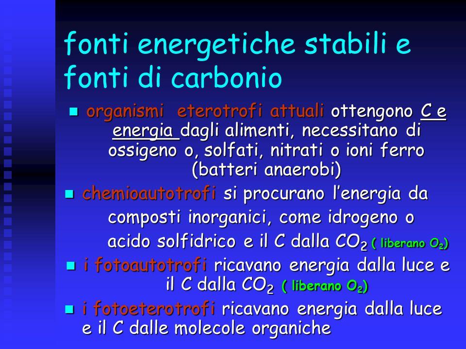 fonti energetiche stabili e fonti di carbonio
