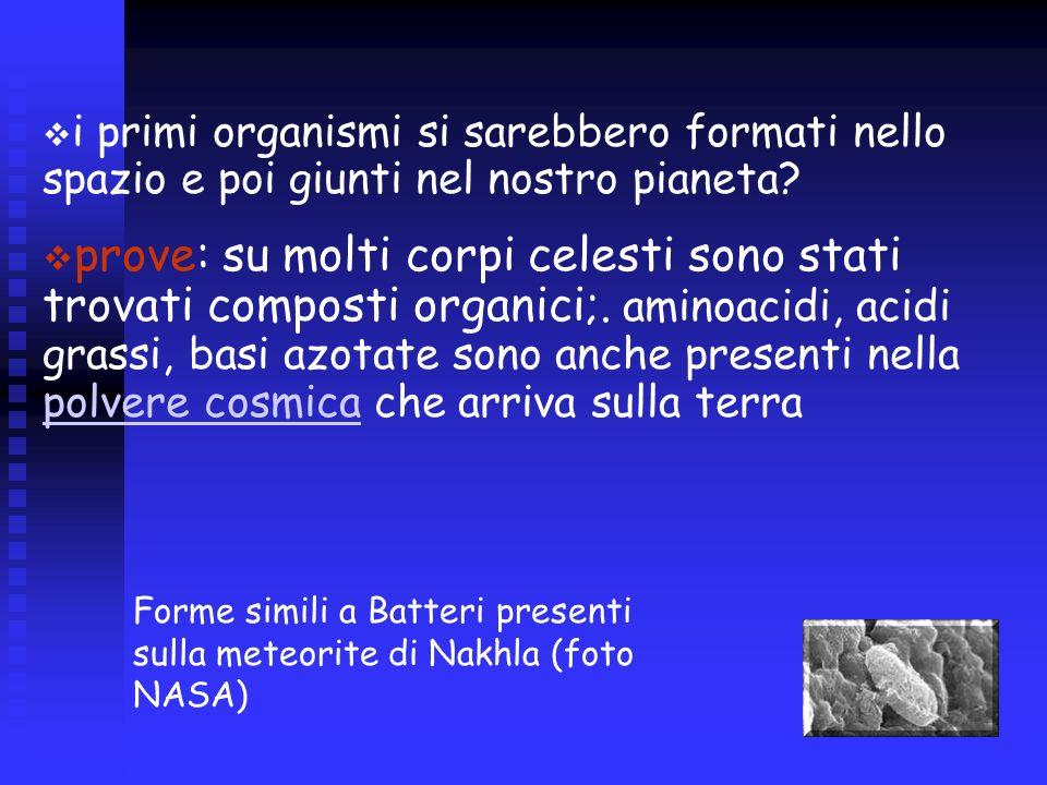 i primi organismi si sarebbero formati nello spazio e poi giunti nel nostro pianeta