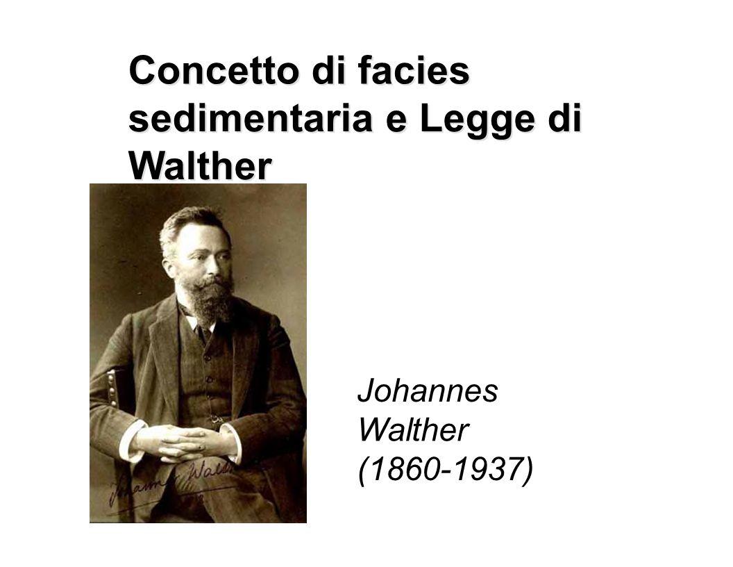 Concetto di facies Concetto di facies sedimentaria sedimentaria e e